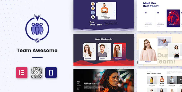 Team Awesome Pro Team Member Showcase WordPress Plugin